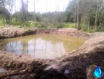 Создание пруда на болотистой местности